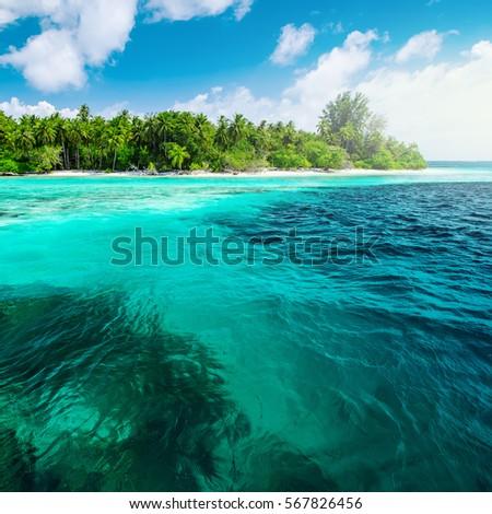 Beautiful nature landscape of tropical island at daytime, Maldives #567826456