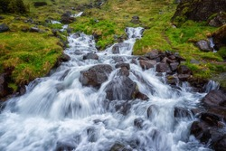 Beautiful nature landscape with flowing water of the fast stream through the green summer valley, outdoor natural background, Iceland
