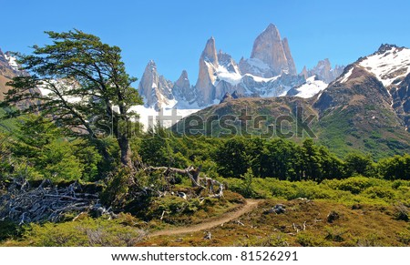 Beautiful nature landscape with Mount Fitz Roy in the background as seen in Patagonia, Argentina.