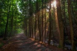 Beautiful nature trail in Jim Thorpe, Pennsylvania