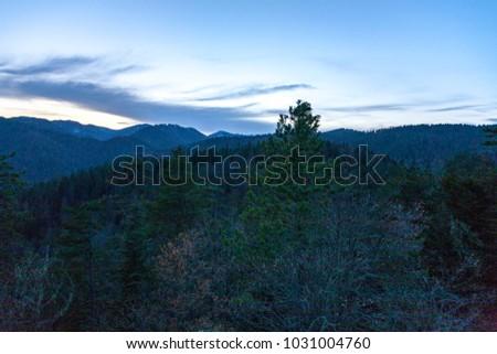 beautiful nature view at plateau #1031004760