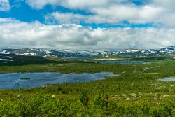 Beautiful nature view of the vastness of the Swedish highlands, with snow covered mountain tops, lakes, and low growing green trees in summer sunlight