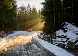 Beautiful nature woodland scene. Springtime foliage. sun behind the forest. Sun rays hitting the trees, beaming down. Snow on the forest road. Dark tree silhouettes. Red pick up truck.