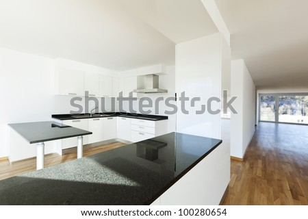 beautiful new apartment, interior, view of the kitchen