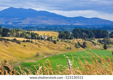 Beautiful New Zealand nature landscape