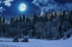 Beautiful night in winter. Mountain landscape