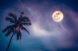 Beautiful night landscape of colorful sky, foggy is swinging between coconut palm tree and bright full moon with many stars. Serenity blue nature background. The moon taken with my camera.