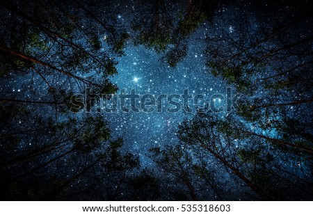 Beautiful night sky, the Milky Way and the trees. Elements of this image furnished by NASA.