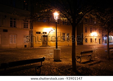 beautiful night view of the street in Prague