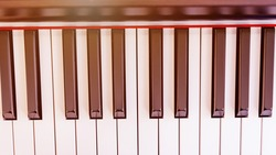 beautiful octaves of modern synthesizer keyboard of black and white colours at bright sunlight close upper view