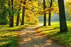 Beautiful October park with trail and bench surrounded by colorful trees illuminated by warm sun