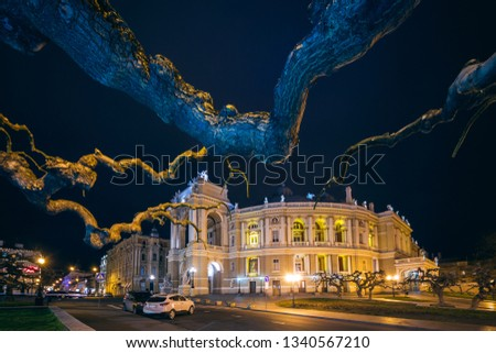 Beautiful old baroque building on the street at night. The branches of the tree. Poshvetka Opera and Ballet Theater in Odessa.