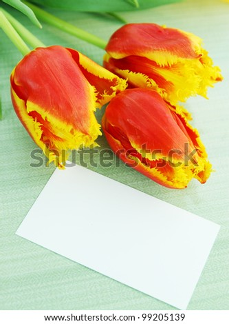 Beautiful orange tulips and a card copy-space