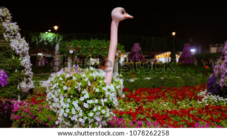 Beautiful ostrick covered with colorful flowers #1078262258