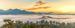 Beautiful panorama landscape of foggy mountain and forest at sunrise