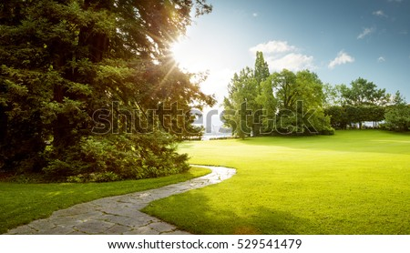 Beautiful panorama of green city park at dawn #529541479