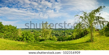 Beautiful panorama view at the trees in the wood by the Danube river  in the spring, from the city of Ilok, Croatia