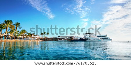 Beautiful panorama with a golden beach with palm trees and yachts against a blue sky with clouds. Romantic idealistic image of an exotic beach holiday. Egypt Hurghada. #761705623