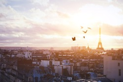 beautiful panoramic view of Paris, buildings and birds in the sky