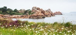 Beautiful panoramic view of Pink Granite Coast between Perros-Guirec and Ploumanach. Cliffs, blooming wild flowers, pine trees and  islands on horizon. Cotes-d'Armor, Brittany, France.