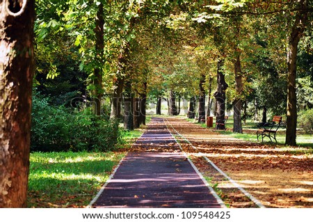 Beautiful park alley with jogging track in Szentes ,Hungary
