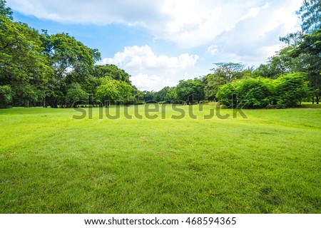 Beautiful park scene in public park with green grass field, green tree plant and a party cloudy blue sky #468594365