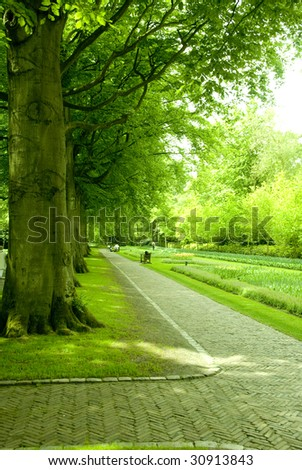 beautiful park with green trees in holland - Shutterstock ID 30913843