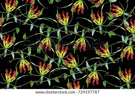 Beautiful pattern of climbing lily flowers