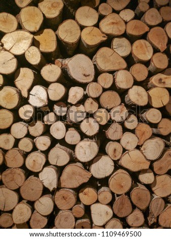 Beautiful pattern of different sizes of logs were stacked together as a wall. Can be used as background or interior picture.