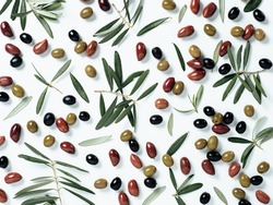 Beautiful pattern with green, black and red olives and olives tree leaves and branches on white background. Mix olive tree fruits and branches as pattern, top view or flat lay.