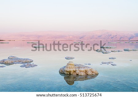 Beautiful photo coast of the Dead Sea , Israel . Bokeh . #513725674