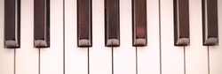 beautiful piano synthesizer octave of black and white colours reflects stage illumination extreme close upper view