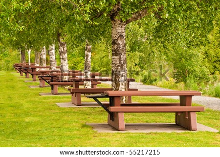 Beautiful picnic area at Porteau Cove park, Vancouver, Canada.