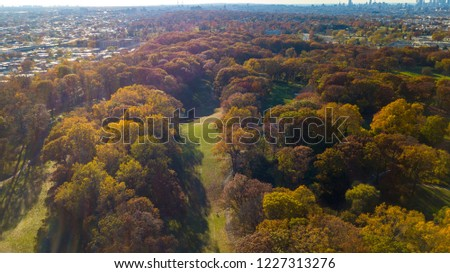 Beautiful pics of the trees in the fall changing colors