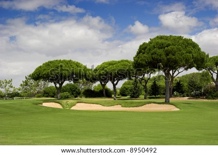 Beautiful picture of a golf camp with pine trees