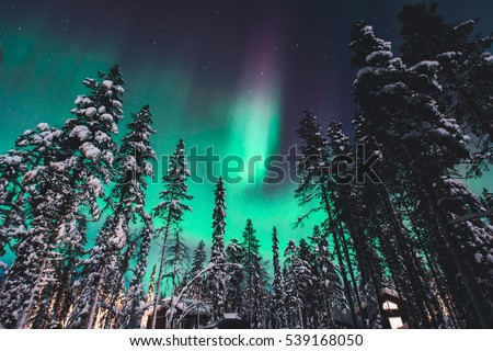 Beautiful picture of massive multicolored green vibrant Aurora Borealis, Aurora Polaris, also know as Northern Lights in the night sky over winter Lapland landscape, Norway, Scandinavia\n