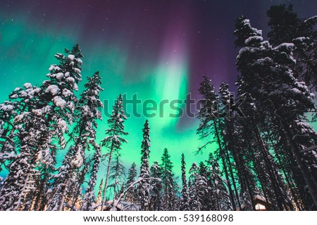 Beautiful picture of massive multicolored green vibrant Aurora Borealis, Aurora Polaris, also know as Northern Lights in the night sky over winter Lapland landscape, Norway, Scandinavia  #539168098