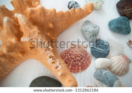 Beautiful picture with bright brown starfish and several colorful stones and shells. Close-up. Top view. Nice collection.