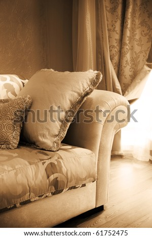 beautiful pillow on a sofa in modern apartment