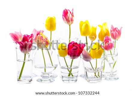 Beautiful pink and yellow tulips in different flasses on white