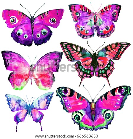 beautiful pink butterflies,watercolor,isolated on a white