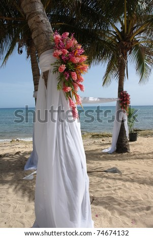 beautiful pink flower arrangements flank soft white silk and decorate the palm trees for this beach wedding