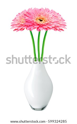 Beautiful Pink Gerbera Daisy Flowers In Vase Isolated On White