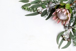 Beautiful pink King protea surrounded by Australian native eucalyptus leaves and gum nuts, creating a floral border on a white background. Space for copy.