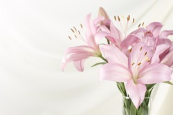 Beautiful pink lily  in glass vase on white fabric