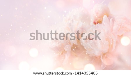 Beautiful pink peony bouquet art background. Blooming pastel peony or roses border flowers card design. Wedding backdrop, Valentine's Day concept. Birthday bouquet, bunch. Blossom, flower closeup #1414355405