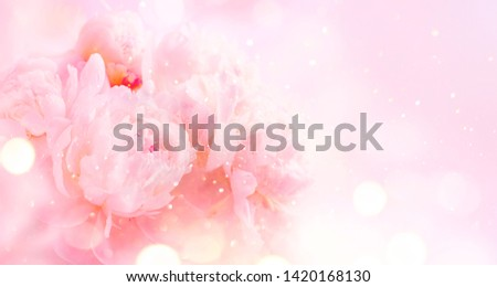 Beautiful pink peony bouquet art background. Blooming pastel peony or roses border flowers card design. Wedding backdrop, Valentine's Day concept. Birthday bouquet, bunch. Blossom, flower closeup #1420168130