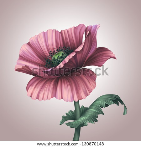 beautiful pink poppy flower with leaf - stock photo