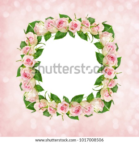 Beautiful pink rose flowers in square frame with white card for text on bokeh background. Top view. Flat lay.