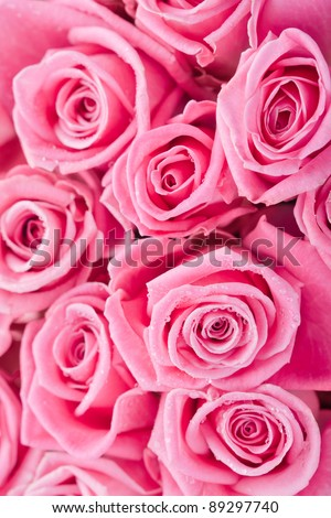 stock photo Beautiful pink roses background bridal bouquet